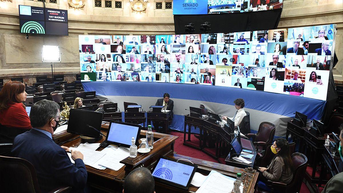 Crista Fernández de Kirchner dirigió la sesión virtual en el Senado