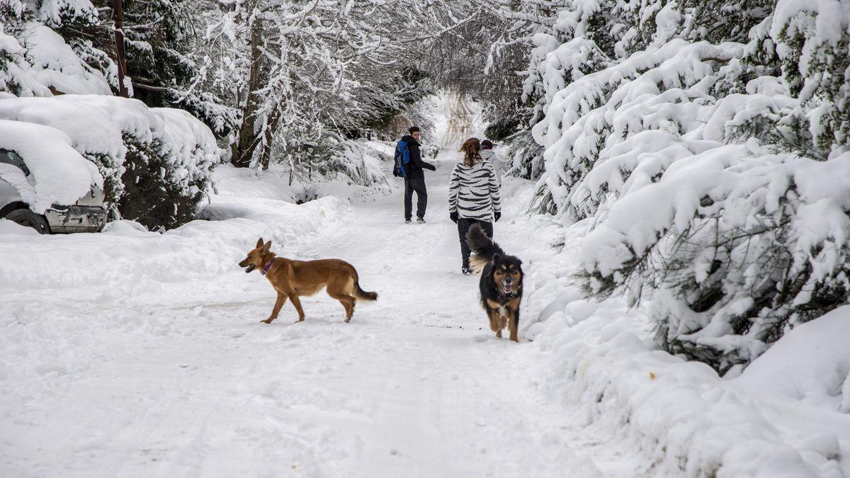 Salidas recreativas en medio de la nieve en Bariloche.