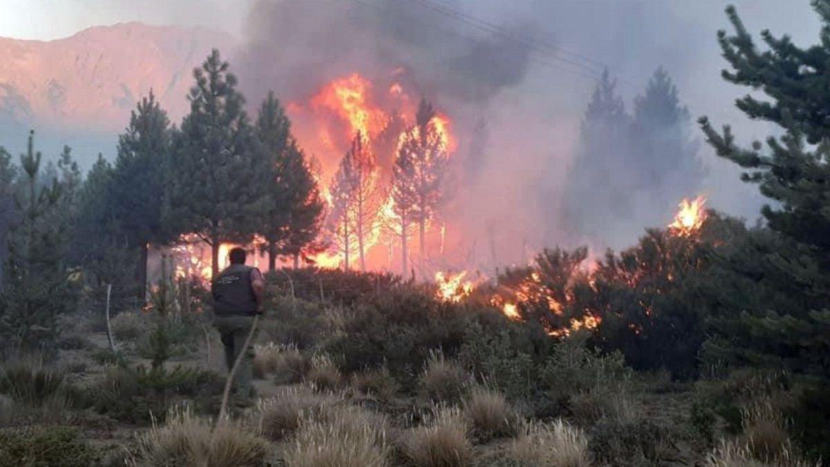 El fuego arrasa con el bosque patagónico en Río Negro.