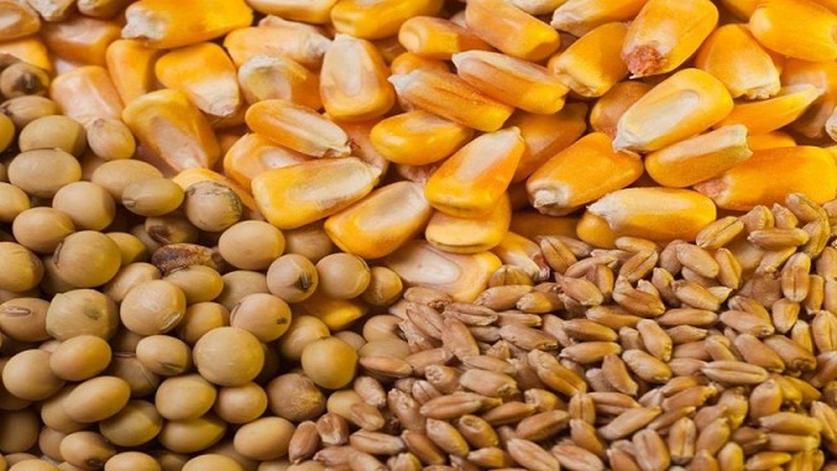 Suben precios del trigo y caen los de la soja y el maíz en Chicago