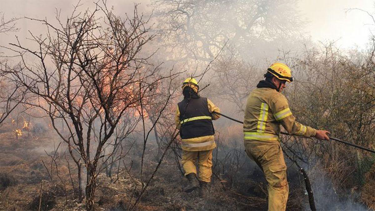 Incendios forestales intencionales en La Calera