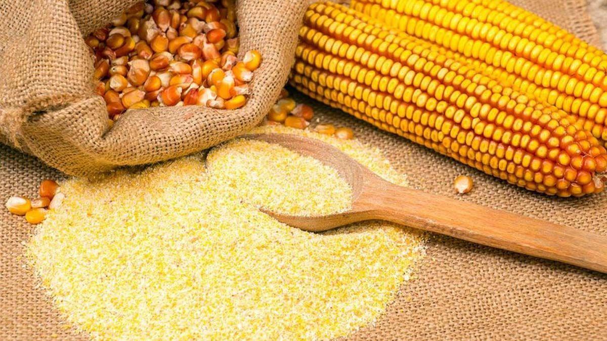 Reabren parcialmente las exportaciones de maíz.