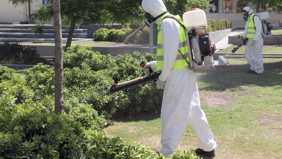 Dan por controlado el brote de dengue en Córdoba